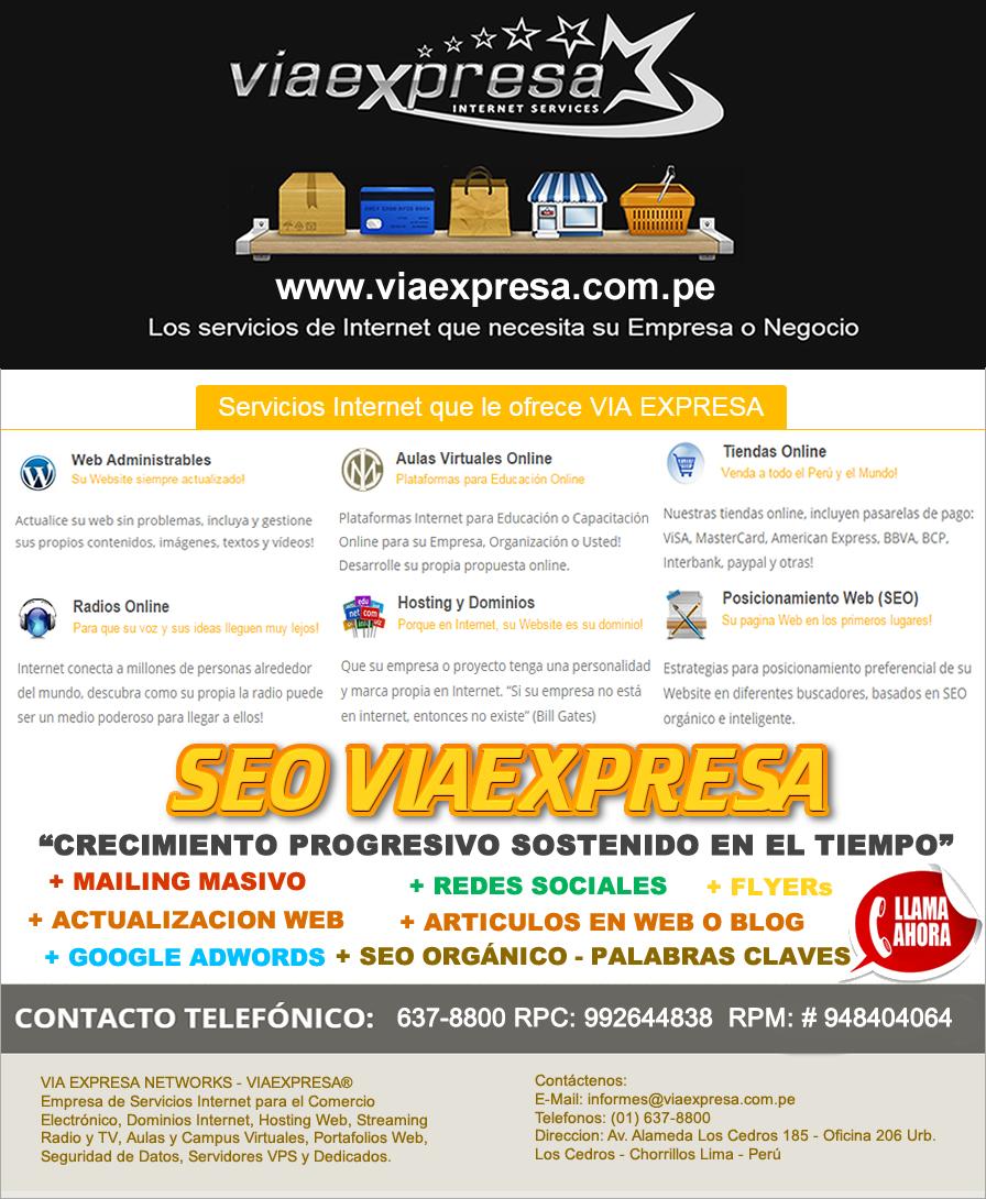 SEO VIA EXPRESA – Servicio de Posicionamiento Sostenible en Internet